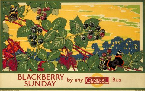 Blackberry Sunday by Any General Bus, by Walter E Spradbery, 1929